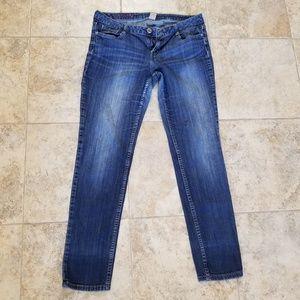 Arizona Jean Co. Curvy Skinny Blue Jeans